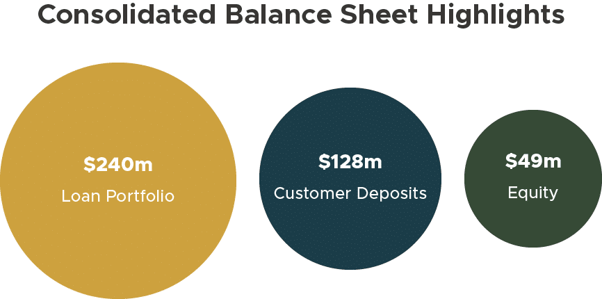 Agora Consolidated Balance Sheet Highlights